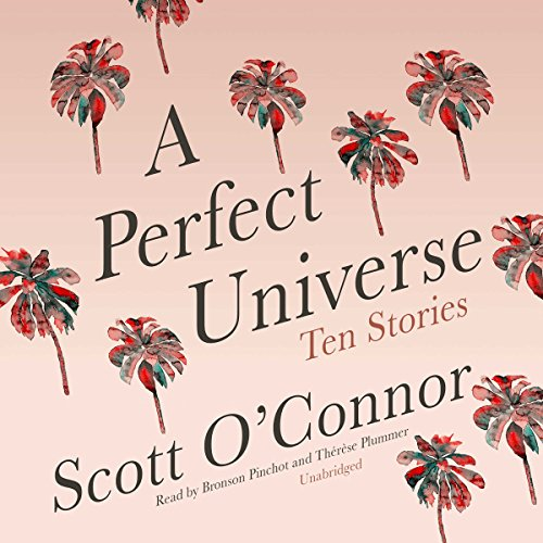 A Perfect Universe audiobook cover art