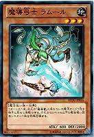 遊戯王 REDU-JP016-N 《魔導弓士 ラムール》 Normal