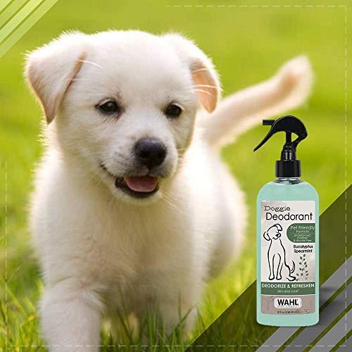 Wahl Deodorizing & Refreshing Pet Deodorant for Dogs - Eucalyptus & Spearmint for Coat Shine & Strengthening - 8 Oz