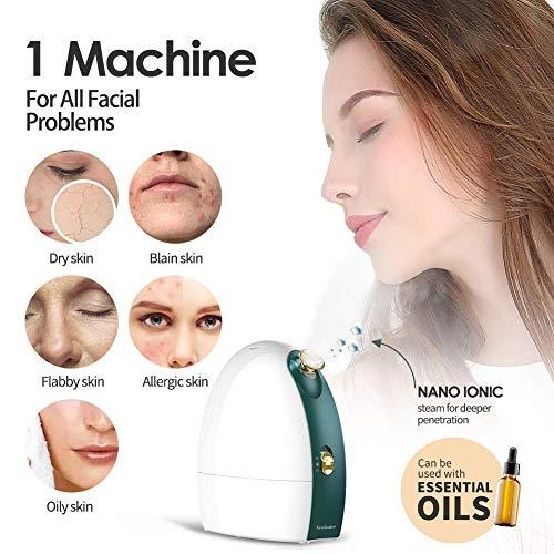 The Nebealer Facial Steamer