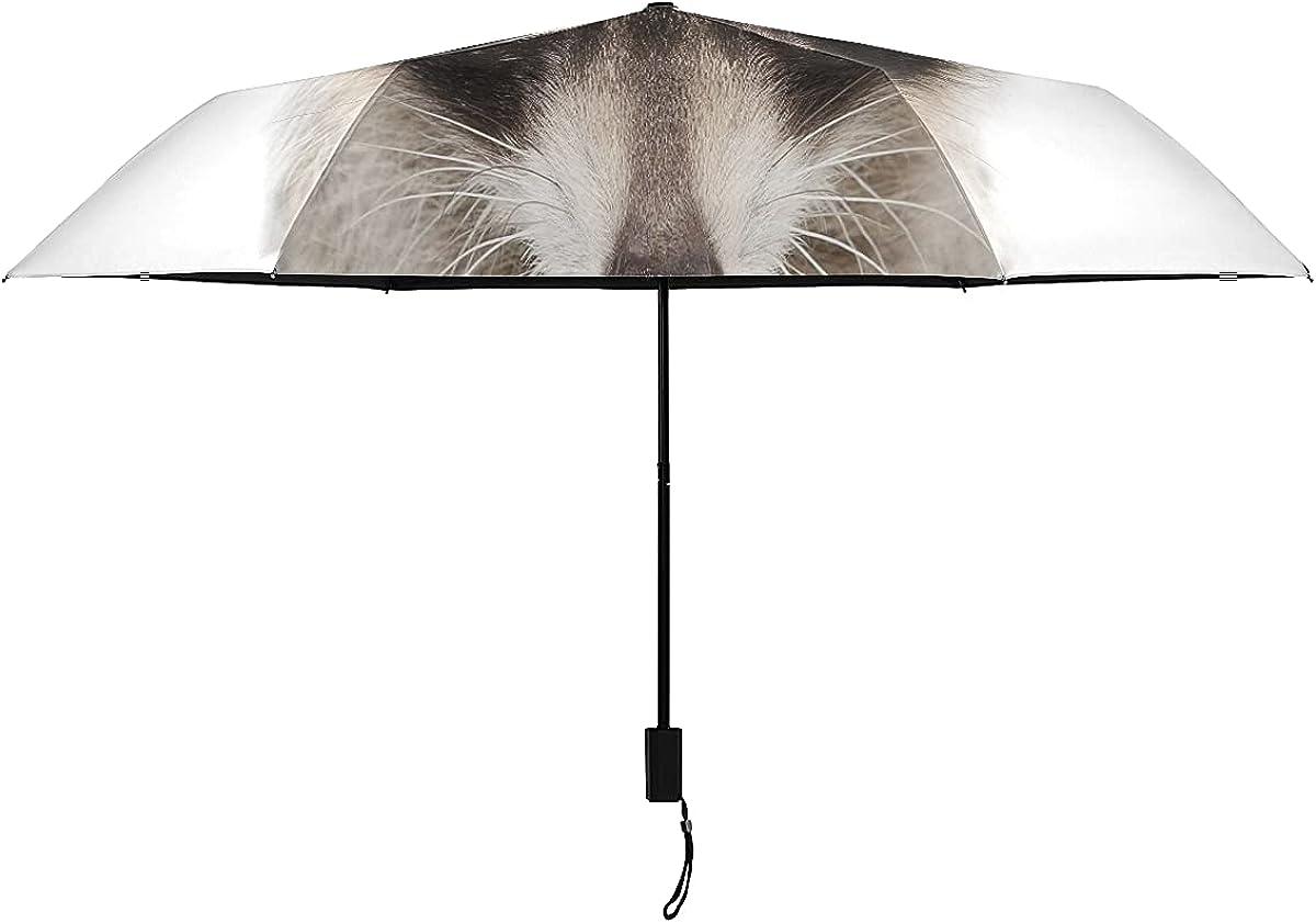 Travel Inverted Umbrella Genuine Portrait Of A Isolated Raccoon Indefinitely Closeup