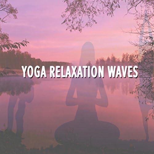 Yoga, Reiki & Relaxing Mindfulness Meditation Relaxation Maestro