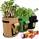 Tenrany Home 3 Pack Plant Grow Bag, 10 Gallon Fabric Potato Growing Bags with Visualized Window, Large Vegetables Planters Pots Container for Garden Nursery Plants (10 Gallon, Multi)