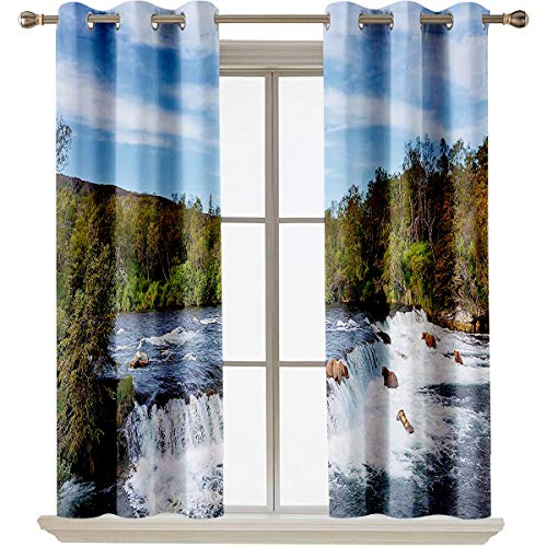 "Wildlife Decor Grommet Curtain for Bathroom Alaskan Bears Eat Fish in the Small Cascade Surrounded by Foliage Camp Place Suitable forThe best choice for bedroom and living room W63""x L45"" Blue Green"