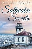 Saltwater Secrets (A Westcott Bay Novel)