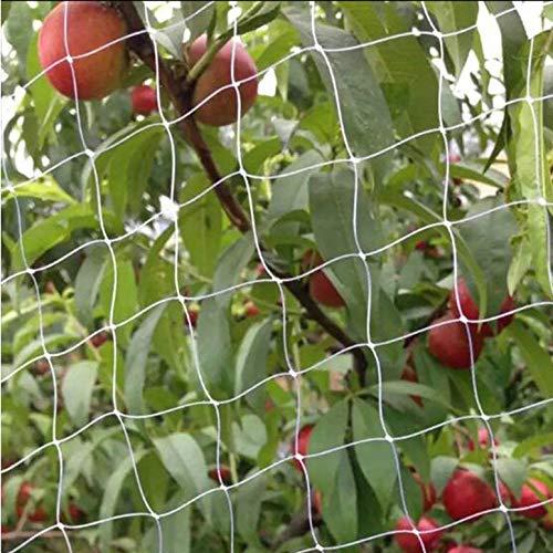 防鳥網 ベランダ 鳥よけ 防鳥ネット 鳩 鳥害対策 透明色ネット 目合い2.5cm国華園/こっかえん/大きな木もすっぽり覆える!