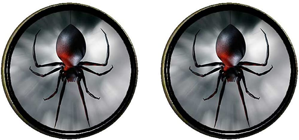 GiftJewelryShop Bronze Retro Style black widow spider Photo Clip On Earrings 14mm Diameter