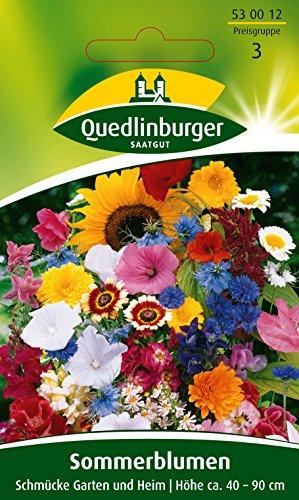 Sommerblumen, Schmücke Garten und Heim, Samen für ca. 3 qm.
