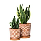 Set of 2, Terracotta Plant pots, Line Pattern Design, 4 Inch and 6 Inch, Planter Pot with Drainage Hole and Tray, Terracotta/White