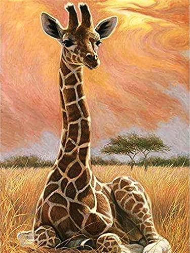 Pintura al óleo por números para adultos jirafa sin marco pintura DIY por números sobre lienzo animales decoración del hogar pared W9 50x65cm