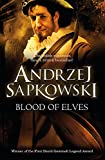 Blood of Elves: Witcher 1 ? Now a major Netflix show (The Witcher, Band 3) - Andrzej Sapkowski
