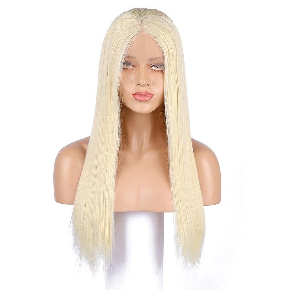 宇宙船腹痛つぶすHOHYLLYA レースフロントかつら斜め前髪アニメコスチュームロングストレートコスプレかつらパーティーかつら耐熱合成髪のかつら女性用ハーフハンド結ばれたファッションかつら (サイズ : 23.6