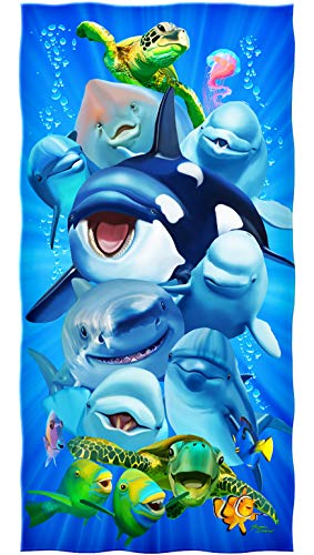 Ocean Animals Dolphin Shark