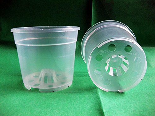 Geosism & Nature Vase Transparent pour orchidées 12x10.5 cm (10 pièces), Compagnie Arca
