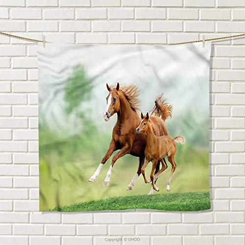 """ZYcccTT Horse Square Towel Mare and Foal Summer Meadow Hair Towel Size: W 10"""" x L 10"""""""