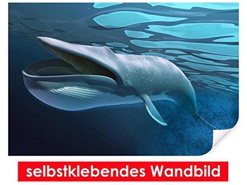 Image murale auto-adhésif Swimming Whale – Facile à coller – Wall Poster Print, Wall Paper,, film vinyle avec point décoratif pour murs, portes, meubles et toutes les surfaces lisses de Trend murs, 150 x 100 cm