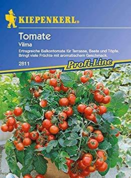 Potseed Kiepenkerl Seed Balkon Tomate Vilma