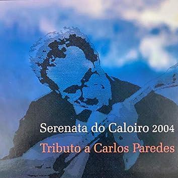 Serenata ao Caloiro 2004 - Tributo a Carlos Paredes