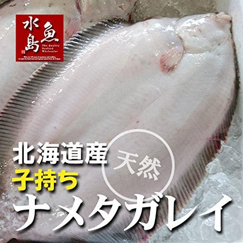 魚水島 北海道産 天然 子持ちナメタガレイ 1.0〜1.3kg 1尾(生冷凍)