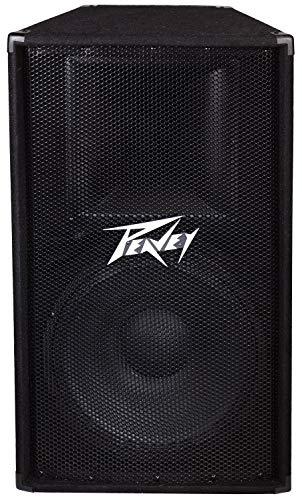 Peavey PV 115 2-Way Speaker