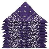 KARL LOVEN Lote de 5 bandanas 100% Algodon Paisley Panuelo Cabeza Cuello Bufanda (Juego de 5, Purpura)