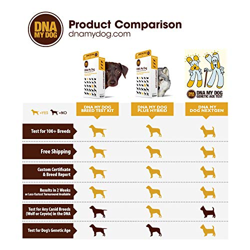 Dna My Dog - Canine Breed Identification Test Kit - at-Home Cheek Swab Kit - Personality Traits