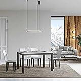 Itamoby, Everyday Evolution - Mesa extensible blanca fresno 90 x 120 alargada 224