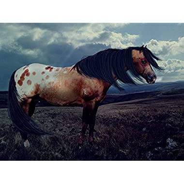 Appy War Horse -Oil Painting On Canvas Modern Wall Art Pictures For Home Decoration Wooden Framed (20X16 Inch, Framed)