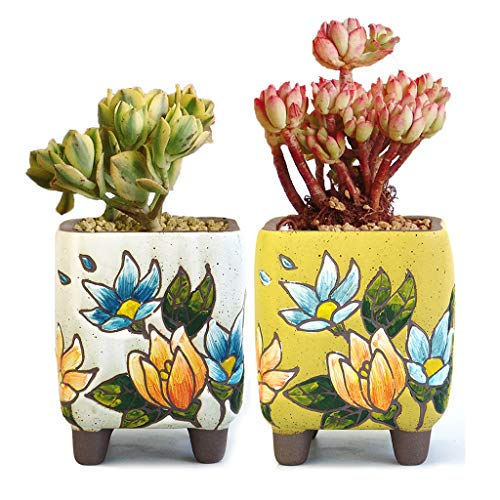 Summer Impressions 4.88 Inch Tall Hand Painted Square Succulent Planter Cactus Planter Pot Bonsai Pot Clay Pot Flower Pot Floral Design Indoor Outdoor Pack of 2 (Tall Square White and Yellow)