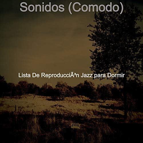 Lista De Reproducción Jazz para Dormir