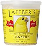 Food For Canaries