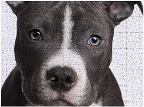 500 Pieces Jigsaw Puzzles American Pit Bull White Intellectual Decompressing Fun Family Puzzles product image