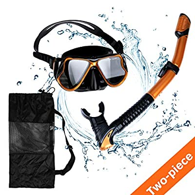 AriTan Snorkeling Snorkel Package Set, Anti-Leak Anti-Fog Coated Glass Diving Panoramic View Clear Tempered Glass Mask, Dry Top Soft Mouthpiece Snorkel Tube, Snorkeling Gear Bag (Golden, Two-Piece)