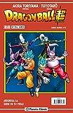 Dragon Ball Serie roja nº 216 (Manga Shonen)