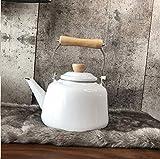 Tetera de hierro fundido, tetera, tetera, hervidor de agua, 1,6 l, color blanco
