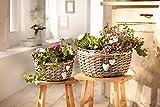 2er Set Pflanzkörbe aus Weide, grau, mit Deko-Herzen, Blumentopf, Pflanzkübel