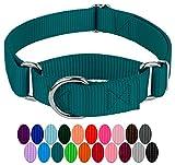 Country Brook Petz Martingale Hundehalsband, Nylon, robust, 21 leuchtende Farben (2,5 cm breit, mittel)