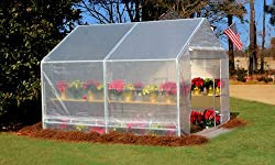 King Canopy Greenhouse Clear GH1010
