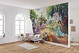 Komar Papel pintado fotográfico Disney | Parque Princess | Tamaño: 368 x 254 cm (ancho x alto) | Niñas, princesas, papel pintado para pared, habitación infantil, decoración | 8-4109
