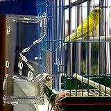 Chiwe Comedero acrílico para pájaros, comedero Transparente para pájaros, comedero para pájaros para la Tienda de Mascotas casera para Pieles de Tigre Mannikin, Perla