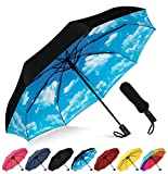 Rain-Mate Compact Travel Umbrella - Windproof, Reinforced Canopy, Ergonomic Handle, Auto Open/Close (Blue Sky)