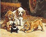 YUHHGFK Pintar por Numeros Adultos Cachorro Animal Pintura al óleo de DIY por Números con Pinceles y Pinturas para Adultos y Niños Decoraciones para el Hogar- 40 x 50 cm (Sin Marco)