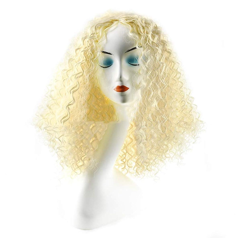 下るパットIsikawan かつら女性のための毎日のコスプレドレスファッションレディブロンドショートカーリーヘアーアフリカの小さなボリューム爆発ヘッド (色 : Blonde)