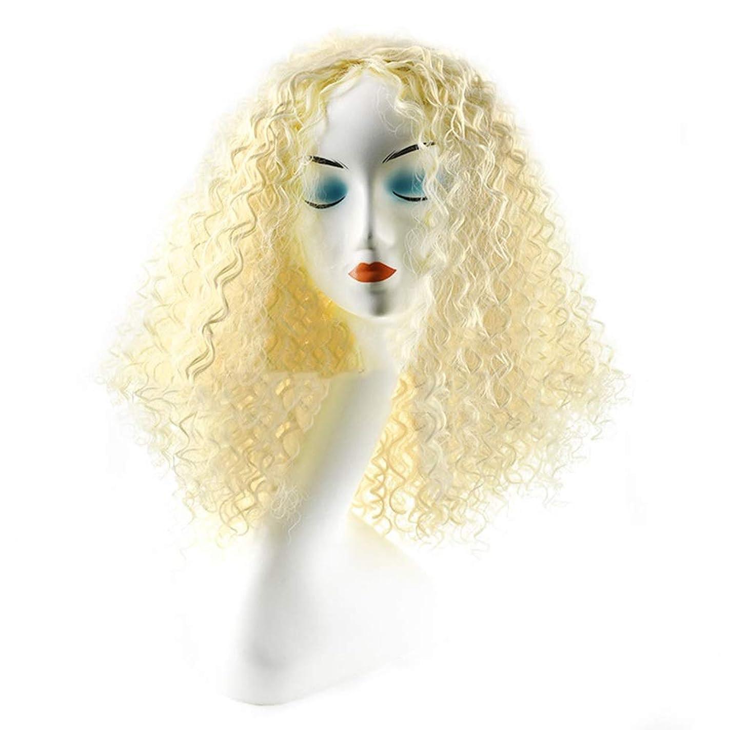 厄介などきどきマグIsikawan かつら女性のための毎日のコスプレドレスファッションレディブロンドショートカーリーヘアーアフリカの小さなボリューム爆発ヘッド (色 : Blonde)