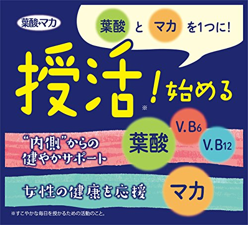井藤漢方製薬葉酸+マカ60粒