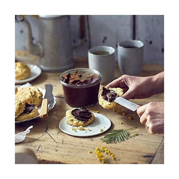 Opinel Cuchillo de Desayuno, Material Mango Madera de Haya, Color marrón Claro, 21,3 x 1,8 x 2 cm, naturaleza (254470)