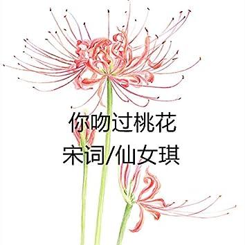 你吻过桃花 (feat. 仙女琪)