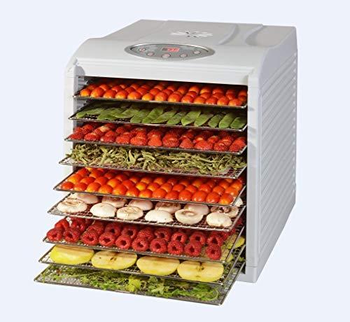 Kitchen Chef kys333d Essiccatore frutta e verdura 9livelli 650W