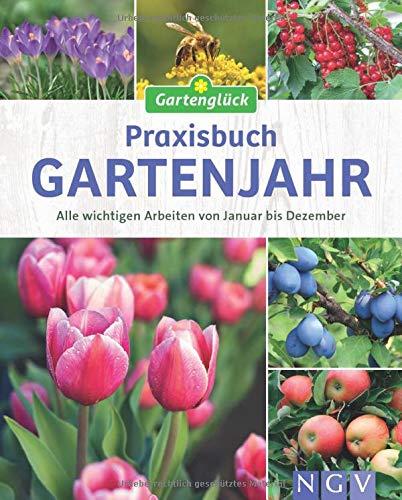 Praxisbuch Gartenjahr: Alle wichtigen Arbeiten von Januar bis Dezember