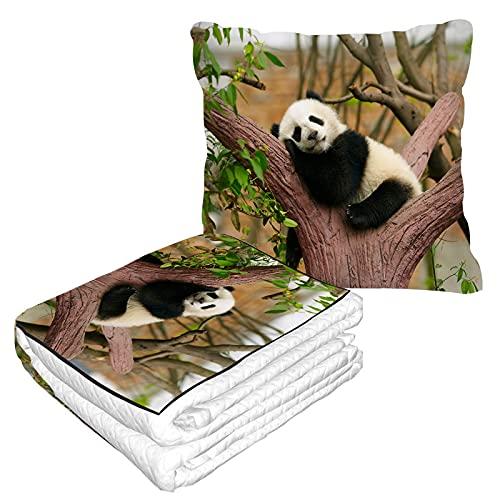 Panda Reisekissendecke entzückendes...